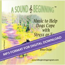 A Sound Beginning CD (MP3 Format)