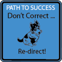 BLUE - Don't Correct ...Re-Direct! (STF)