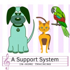 A Support System