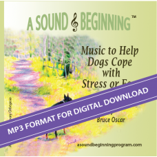 A Sound Beginning CD (MP3 Format)
